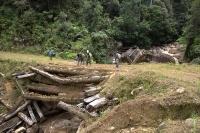 Borneo 2013 - raj krčiažnikov, časť 4