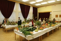 Výstava v Ivanke pri Dunaji 2010