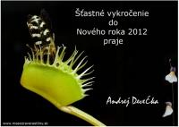 Všetko najlepšie do Nového roka 2012