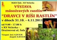 Výstava mäsožravých rastlín v Šali